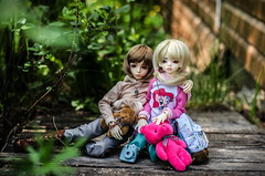 country (Suliveyn) Tags: bjd doll dim dollinmind larina leekeworld leeke benjamin