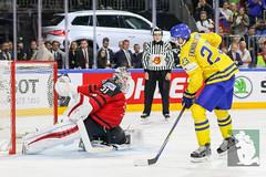 IIHF17 18-5-17-129.jpg (sushysan.de) Tags: canada cologne deb day13 deutschereishockeybund eishockey finals goldmedal iihf icehockey koeln pix pixsportfotos paris sweden weltmeisterschaft worldchampionship pixsportfotosde sushysan sushysande