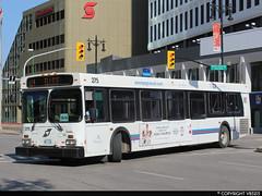 Winnipeg Transit #275 (vb5215's Transportation Gallery) Tags: winnipeg transit 2007 new flyer d40lf