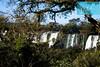 Salto Mibiguá y Gpque. Bernabé Méndez de las Cataratas del Iguazú, Parque nacional Iguazú (Provincia de Misiones / Argentina) (jsg²) Tags: jsg2 fotografíasjohnnygomes johnnygomes fotosjsg2 viajes travel postalesdeunmusiú cataratasdoiguaçu cataratasdeliguazú cataratas ríoiguazú misiones parquenacionaliguazú parquenacionaldoiguaçu sietemaravillasnaturalesdelmundo departamentoiguazú provinciademisiones regióndelnortegrandeargentino new7wondersofnature setemaravilhasnaturaisdomundo repúblicaargentina argentina ladoargentino argentino patrimoniodelahumanidad patrimoniomundial worldheritagesite unesco patrimóniodahumanidade parqueyreservanacionaliguazú reservanacionaliguazú américadelsur sudamérica suramérica américalatina latinoamérica álvarnúñez saltosdesantamaría iguazufalls iguazúfalls iguassufalls iguaçufalls saltobossetti saltosanmartín saltombiguá saltoescondido saltogpquébernabéméndez saltomibiguá saltogpquebernabéméndez circuitosuperior