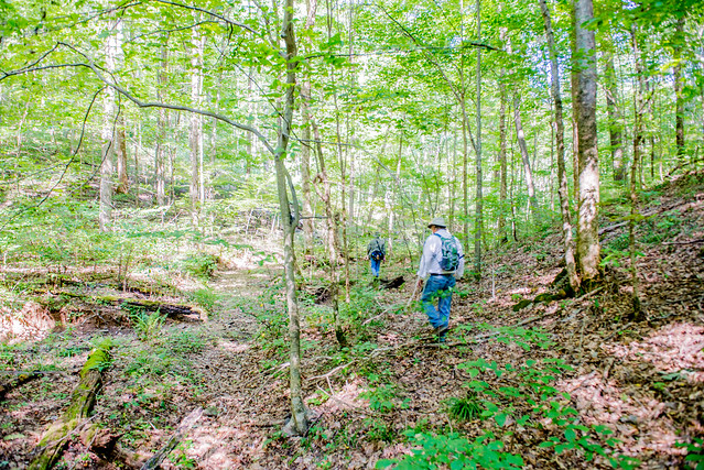 Hoosier National Forest - Charles C. Deam Wilderness - Mt. Carmel Fault - September 8, 2017