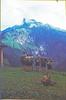 Wanderlager (Alvier) Tags: schweiz switzerland graubünden oberland wanderlager pfadfinder pfadi pfadfinderabteilungalvierbuchssg wandern berge alp
