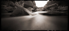 Cheat River Narrows (DRCPhoto) Tags: zeroimage612b pinhole lenslessphotography westvirginia cheatriver