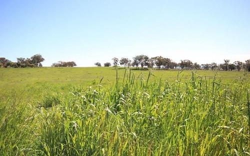 9, Hill View Estate, Gulgong NSW