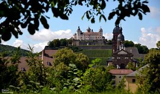 Die Festung Marienberg vom Hofgarten aus gesehen