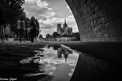 Notre Dame de Paris (karmajigme) Tags: notredame church paris monument architecture reflection religion france travel city monochrome blackandwhite noiretblanc voyage nikon