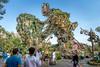 Pandora, land of Avatar (fractal pics) Tags: disney waltdisneyworld disneyworld animalkingdom avatar pandora disneyphotos disneyphotography sonya7rii disneyparks