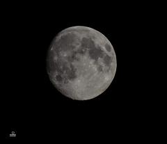 DSC_0361 (mucahitcam) Tags: moon ay chernivtsi ukraine