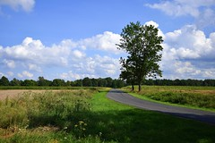 summer moods (JoannaRB2009) Tags: summer mood path road countryside tree green blue sky clouds fields landscape view nature lowersilesia dolinabaryczy polska poland