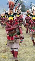huli wigmen marching in (kthustler) Tags: goroka singsing papuanewguinea tribes huliwigmen mudmen