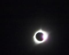 Diamond Ring (Kansas Poetry (Patrick)) Tags: eclipse totality diamondring kansas patrickemerson patricknancydototality