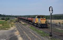 DB Cargo Polska 6490, Pniówek, 20-7-2017 11:45 (Derquinho) Tags: db cargo polska 6490 gele pniówek ns railion schenker polen poland mak 6400 kacper