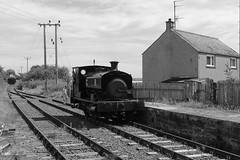 2017-07-30; 079. Barclay No 1863, 'Wee Barclay' (build 1926, Anglo-Scottish Sugar Beet co., Cupar). Bridge of Dun (Martin Geldermans; treinen, Züge, trains) Tags: caledonianrailway brechin bridgeofdun barclay 040 barclay1863 weebarclay steamlocomotive steamtrain steam stoomtrein stoom stoomlocomotief dampf dampfzüge dampflok