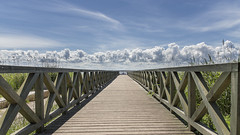 a wooden road to the clouds (ignacy50.pl) Tags: wood wooden lake water clouds sky bluesky landscape colorful fullframe baltic bridge ignacy50 sunlight summer