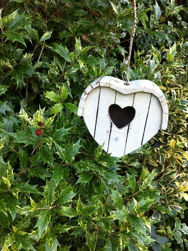 Heart Shaped (Bird) Box