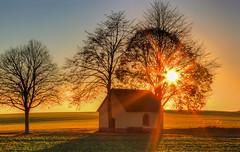 Abendsonne an der Kapelle bei Illerich (oblakkurt) Tags: kapellen sonnenuntergang sonnenstimmung bäume felder illerich eifel