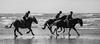 ww17-54 (kevan r) Tags: gallop horses beach seaside waves silhouette
