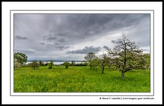 Landscapes on Lake Constance (Bernd F. Laeschke) Tags: imagineyourworld landscapephotography lakeconstance germany europe color clouds spring nature outdoors canon switzerland austria freshwater lake