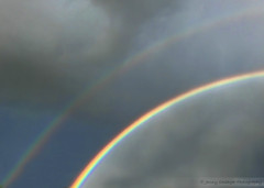 Double the Luck (Jenny Onsager) Tags: double doubletheluck luck rainbow doublerainbow gold potofgold aftertherain rain clouds cloudysky darksky