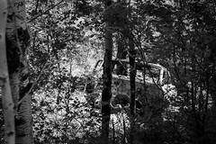 1963 (Millerr567) Tags: 1963 carsonnationalforest newmexico grandpascar accident blackandwhite monochrome chasingart canon6d landscape landscapephotography nature naturephotography