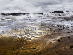 Yellowstone National Park, United States Of America (weesam2010) Tags: yellowstone landscape hills national park united states america steam breathtakinglandscapes grey cloudy overcast geyser bacteria orange norris basin water spring funnel fumerole algae explore