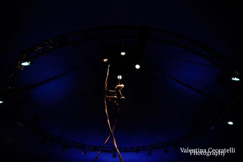 Magda Clan Circus