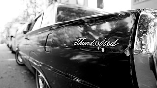 T-bird in monochrome