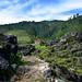 Promueven el manejo sostenible de los bosques y el uso de estufas ahorradoras de leña en Huehuetenango