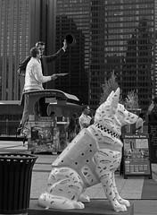 """K9 Patrol: Keeping an Eye on Things"" - Downtown Chicago - 12 Aug 2017 - 7D II - 121F (Andre's Street Photography) Tags: chicago12aug20177dii chicago chicagoil downtown riverfront tribuneplaza fortdearborn outdoor street art sculpture modern modernart outdoorart fineart cityscape landscape urbanlandscape urbanphotography stad stadt ville metropolis kunst straatbeelden sculptures artists artistic chicagopolicememorialfoundation cpmf wwwcpdmemorialorg chicagopolice chicagopoliceofficers killed catastrophicallyinjured inthelineofduty families children cpmfprograms cpmgprojects fundraiser fundraising blackandwhote bw bwphotography zwartwit schwarzweisse blancoynegro blancoenero noiretblanc bn straatfotografie streetphotography stilllife chicagoistphotos chicagotribune chicagojournal chicagomagazine chicagoreader photobyandrevanvegten dutchstreetphotographer chicagostreets aroundillinois enjoyillinois chicagocapture windycity secondcity chitown k9 policedog policecanine k9patrol chicagostreetart"