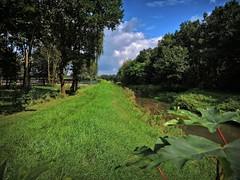 Blick von der der Auebrücke in Richtung Großmoor. (Wallus2010) Tags: auebrücke aue grosmoor explore inexplore