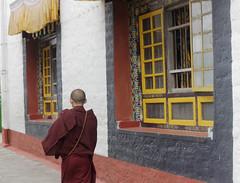 Beautiful Windows      ~ Explore ~ (U A Satish) Tags: sangchenpemayangtsemonastery pelling india architecture uasatish windows sikkim monk building explore monastery budhist