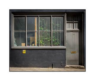 Triffid Behind Bars, East London, England.