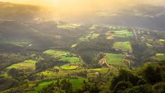 Highlands (Diego S. Mondini) Tags: planalto serradomirador paisagemrural presidentegetúlio santacatarina brasil brazil