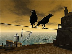 Bird On A Wire @ Tempelhof Hafen (ᗷOOᑎᕮ ᗷᒪᗩᑎᑕO) Tags: secondlife birds wire boats sky sea