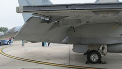 """Boeing F-18 F Super Hornet 16 • <a style=""""font-size:0.8em;"""" href=""""http://www.flickr.com/photos/81723459@N04/36319155216/"""" target=""""_blank"""">View on Flickr</a>"""
