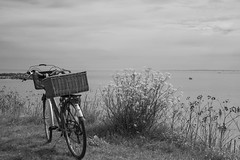 Pique-nique en bord de mer ***--+°-°°° (Titole) Tags: bicyclette bicycle vélo panier basket seaside blackandwhite bw noiretblanc nb titole nicolefaton osier wicker friendlychallenges challengeyouwinner cyunanimous 15challengeswinner challengegamewinner ultimategrindwinner storybookttwwinner