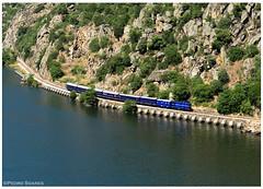 Ferradosa 07-05-2017 (P.Soares) Tags: 1400 comboio train comboios locomotiva portugal portugalferroviário trains tren transportesxxi terminalintermodal lusocarris linhadodouro