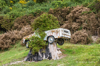 Interesting Parking at Henley, South Otago, New Zealand