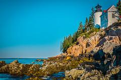 Bass Harbor Head Lighthouse (phoca2004) Tags: bassharborheadlighthouse d90 maine nikon rockyshore sea shore lighthouse tremont unitedstates us rock sky forest bluff landscape trees signal light navigation acadianationalpark