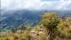 32. El Cocuy, Boyaca, Colombia-2.jpg (gaillard.galopere) Tags: 1635mm 1635mmf28 2017 5d 5dmkiii boyaca colombia colombie elcocuy is l mahoma americadelsur ameriquedusud campodenieve canon cloud discover découverte explore extérieur fog glacier grandangle ice landscape lens lente markiii miradordemahoma mist mkiii montagne montaña mountain neige nuage nuages nube nubes objectif outdoor outdoorphotography overland overlander overlanding panorama paysage recorrido reflex scenery sierra snow southamerica travel traveler traveller valley vallée viaje voyage voyageur wideangle