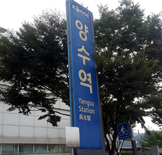yangsu04