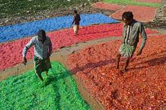 Work hard and make it happen! (ashik mahmud 1847) Tags: bangladesh working people d5100 nikkor colorful pattern plastic garbage