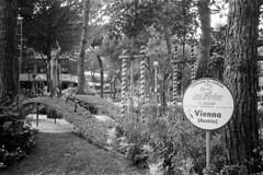 Le aiuole di Milano Marittima (sirio174 (anche su Lomography)) Tags: milanomarittima cervia estate summer july luglio italia italy mare sea aiuola