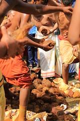 Tu me casses les noix #6 (Spot Life) Tags: paris chapelle cortège fête procession défilé dieu ganesh hindoux eléphant noix coco casser rituel