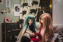Sierra and Dakota (Ilweranta) Tags: doll dollhouse roombox bjd dim dimdoll laia larina dimlarina