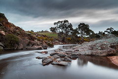 Reedy Creek (Trace Connolly Photography) Tags: australia river mannum mannumfalls water waterfalls creek reedycreek tree trees cloud clouds movement longexposure exposure nature red yellow brown grey green outside wild natural sunlight sunset day hiking countryside winter sigma canon sigma1750f28exdcoshsm canon7d southaustralia rocks wattle acacia rapids stream natur natura naturaleza naturephotography colour color colourful outdoor outdoors eos flickr landscape earth environment environmental environmentalphotography sunrise contrast