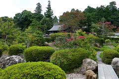 Outer garden at Daichi-ji Temple (大池寺) (Greg Peterson in Japan) Tags: 甲賀市 koka 滋賀県 shiga plants temples gardens japan shigaprefecture