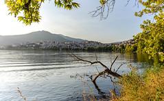 Kastoria lake sunset (KostasTsiaousis) Tags: kastoria greece lake sunset coolpix hdr macedoniagreece makedonia timeless macedonian macédoine mazedonien μακεδονια