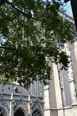 Utrecht: Domkerk cloisters (robin.croft) Tags: cloisters domkerk utrecht holland netherlands medieval stmartin