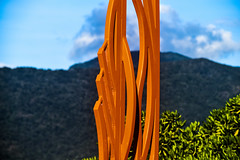 'Windblown Leaves' ----- DSC_5818_edited (harry de haan, the cameraman) Tags: harrydehaan windblownleaves publicart tropical cairns fnq northqueensland orange esplanade colourful queensland australia documentaryphotography fotosdieietstevertellenhebben storytelling nikon d5500